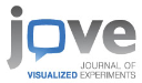 THE JOURNAL OF VISUALIZED EXPERIMENTS