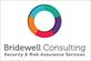Bridewell Consulting Limited
