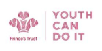 Logo for Prince's Trust