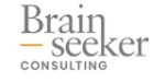 Brainseeker CONSULTING
