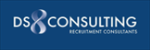 DS8 Consulting