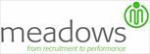 Meadows Consulting