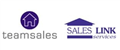 Logo for TeamSales Ltd
